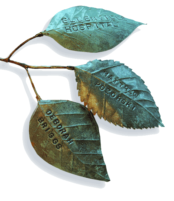 Ways to give leaf
